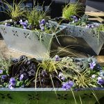 My Guilty Pleasure – Window Boxes