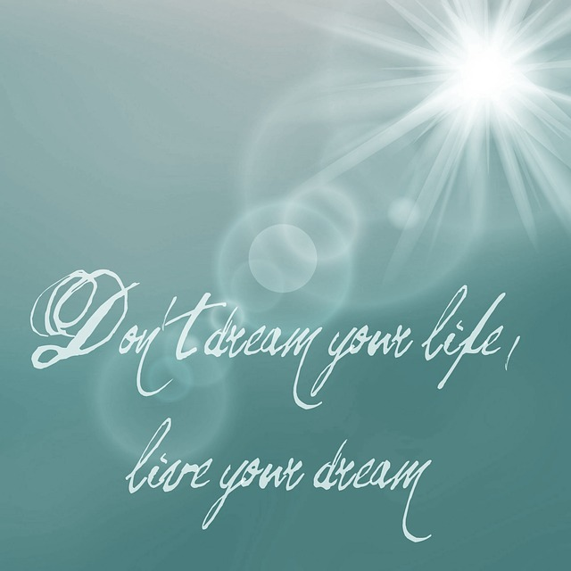 dreams-not-your-life-881080_640